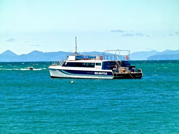 Rassle-Frassing Catamaran!
